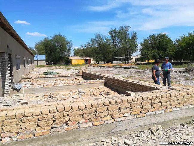 Строительство инсектария для мухи черная львинка в Киргизии