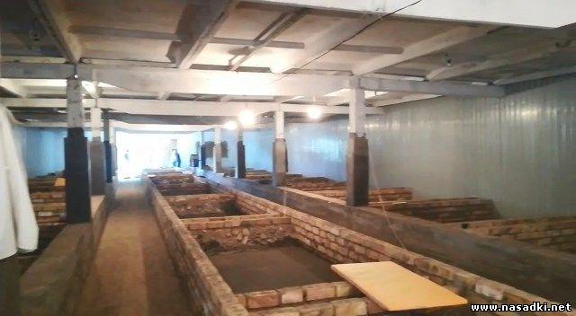 Строительство завода по производству черной львинки в Киргизии - www.nasadki.net