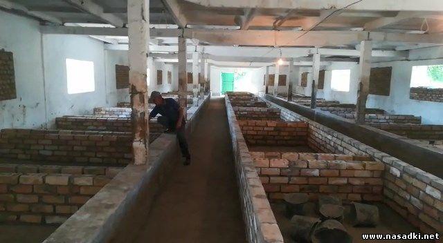 Строительство завода для выращивания личинок черной львинки в Киргизии - www.nasadki.net