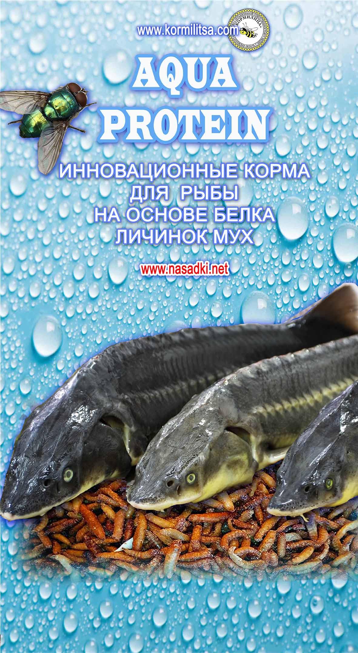 Aquaprotein - новейшие корма для индустриального рыбоводства на сонове белка опарышей